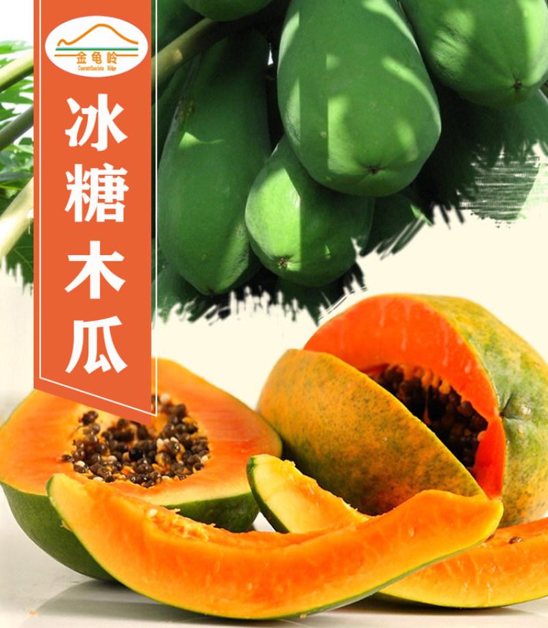 冰糖木瓜 湛江.东盟农博会最受欢迎农产品10斤包邮