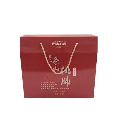 【丝路荟】甘肃景泰 条山桃脯礼盒100g*10袋(全国包邮 新疆、西藏、海南地区除外)