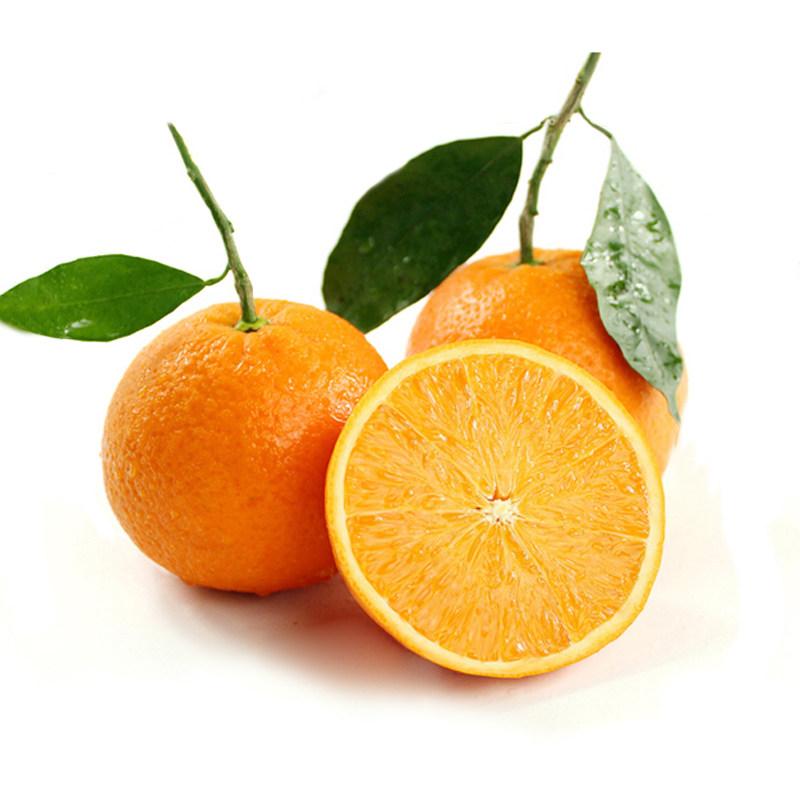 湖北伦晚橙子5/9斤装单果80mm起