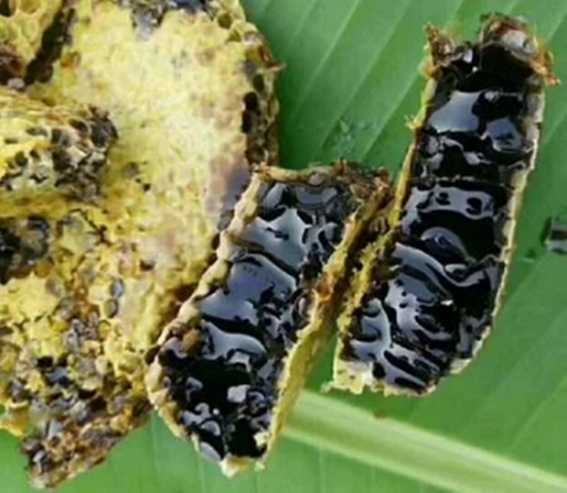 黑米团-云南黑蜂蜜